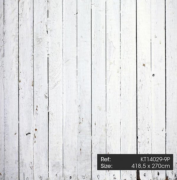 KT14029