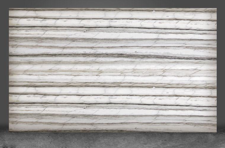 Zebrino Bianco Go Plus